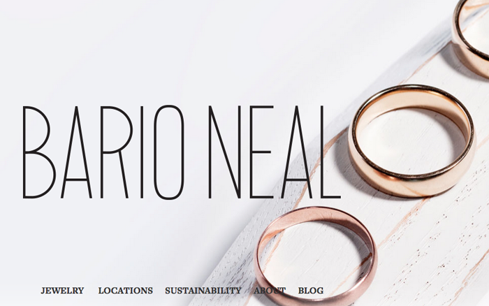 Sustainable Jewelry by Bario Neal