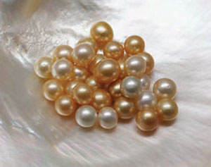 G&G Winter 2012 Pearls