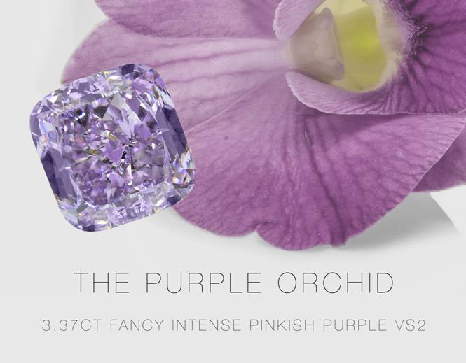 Leibish & Co. • Purple Orchid diamond