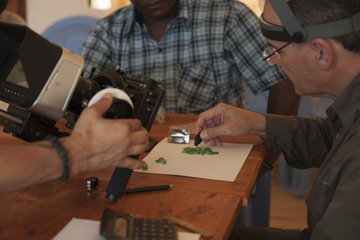 Roger Dery examines rough green garnets in the film. Image courtesy of Sharing the Rough.