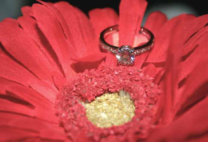 beebrisk's .85 Carat Platinum Micro Pave Engagement Ring (Flower View) - image by beebrisk