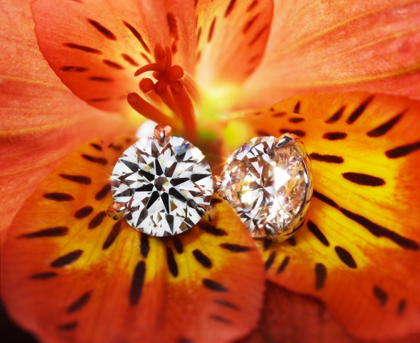 A Cut Above Diamond Studs from Whiteflash - Image shared by sarahb