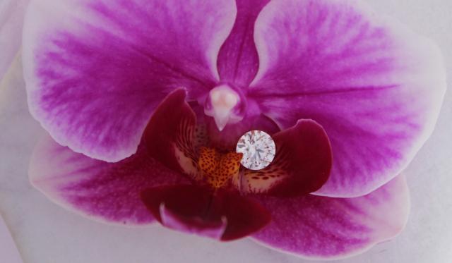 Loose diamond shared by JuneRose