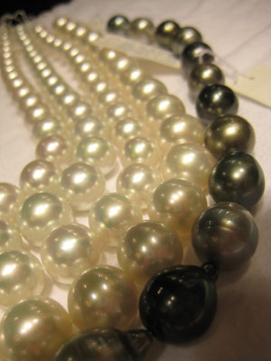 South Sea and Tahitian Pearls