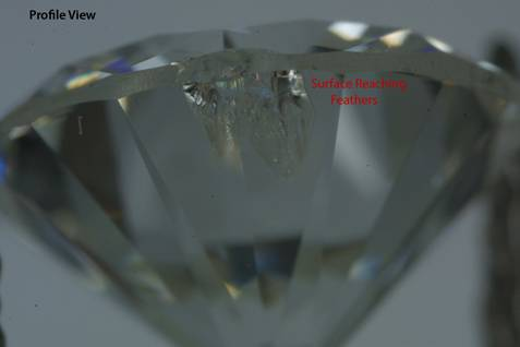 diamond - feather inclusion profile view