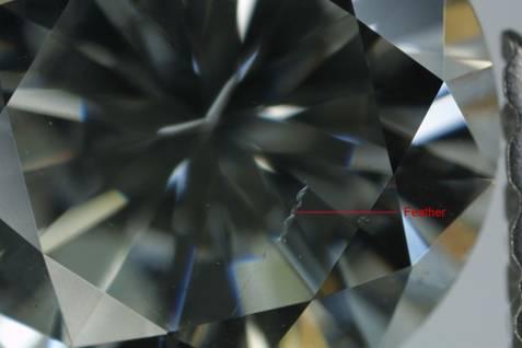 diamond - feather inclusion profile view 2