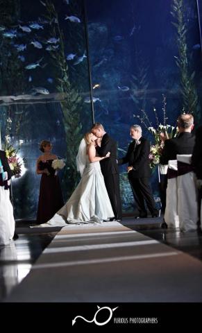Long Beach Aquarium Wedding Prices