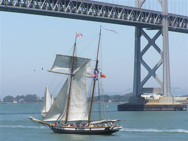 The Lynx Unger the Bay Bridge
