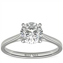 1-1/4 Carat Astor Petite Cathedral Solitaire in Platinum (H/SI2) Ready-to-Ship | Blue Nile