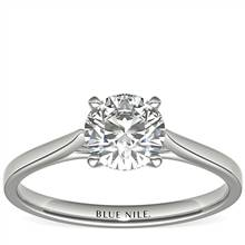 1 Carat Astor Petite Cathedral Solitaire in Platinum (F/VS2) Ready-to-Ship | Blue Nile