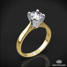 18k Yellow Gold Sleek Line Solitaire Engagement Ring with Platinum Head | Whiteflash