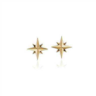 """North Star Earrings in 14k Yellow Gold"""