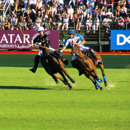 Horses for Courses: Polo Match Jewelry