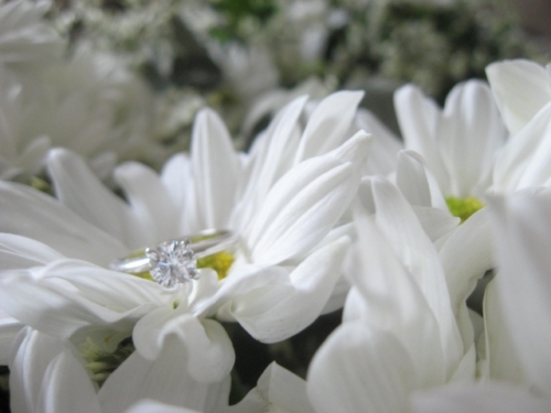 Blue Nile Solitaire Engagement Ring on bright white daisies