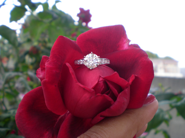 Diamond Engagement Ring in a red rose