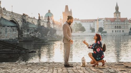 on a brick path alongside of water with a beautiful city behind the, a woman in a floral dress and heels kneels in front of a man with ring box extended. Tall man in taupe suit with man bun and beard looking down at her. Small dog between them.