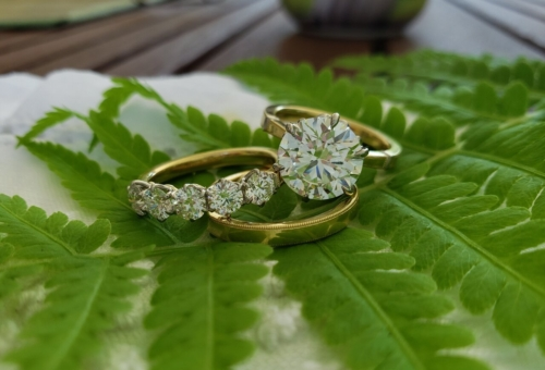 Diamond solitaire, 5-stone ring, gold band on a green leaf.